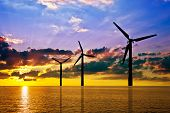 picture of wind-vane  - Silhouette of wind power stations over the sea at sunset - JPG