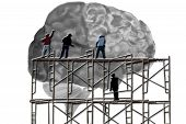 pic of scaffolding  - Men standing on scaffolding while working on a human brain - JPG