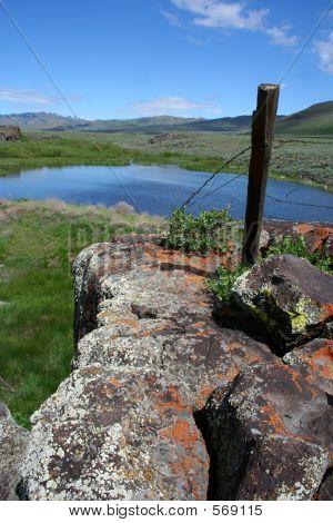 Moonstone Pond 2
