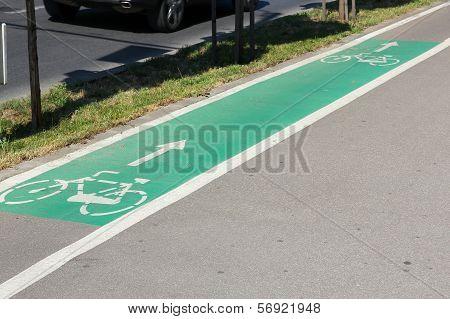 Bicycle Lane In Romania
