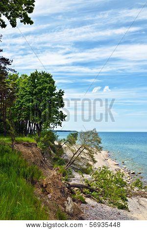 Baltic Beach After A Storm