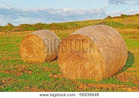 Hay Bales At Dusk