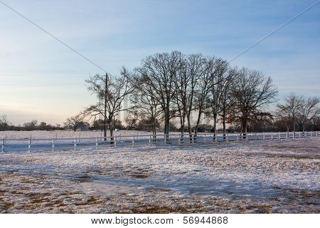Country Snow Landscape
