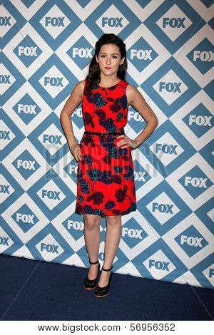 LOS ANGELES - JAN 13:  Shannon Woodward at the FOX TCA Winter 2014 Party at Langham Huntington Hotel on January 13, 2014 in Pasadena, CA