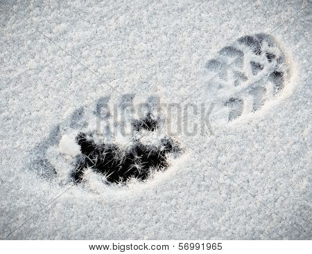 Shoe print In Snow