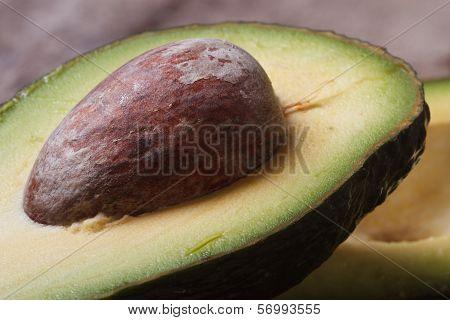 Avocado Seed Closeup