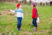 foto of shepherdess  - Kid girl shepherdess sisters happy with flock of sheep and wooden stick in Spain - JPG