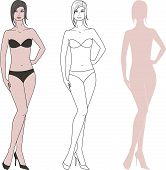 foto of knickers  - Vector illustration of women - JPG