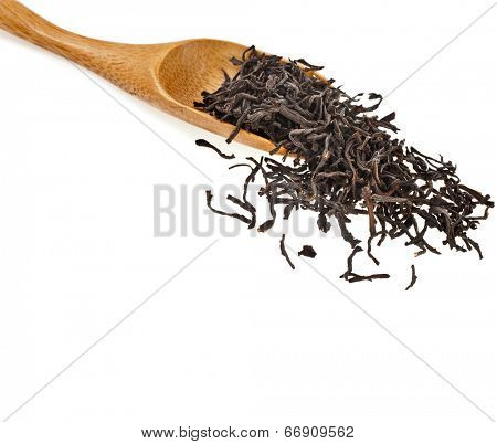 Green tea leaves and wooden spoon isolated on white background