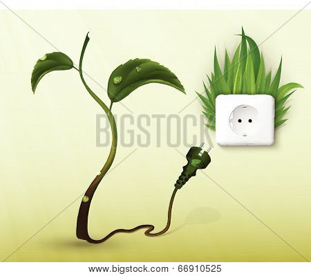 plant, Flower With Plug And Socket. The Concept Of Clean Energy