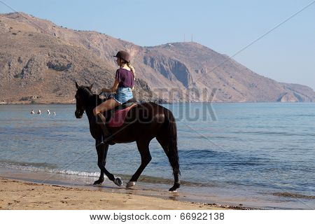 Unidentified Rider On A Horse On The Beach
