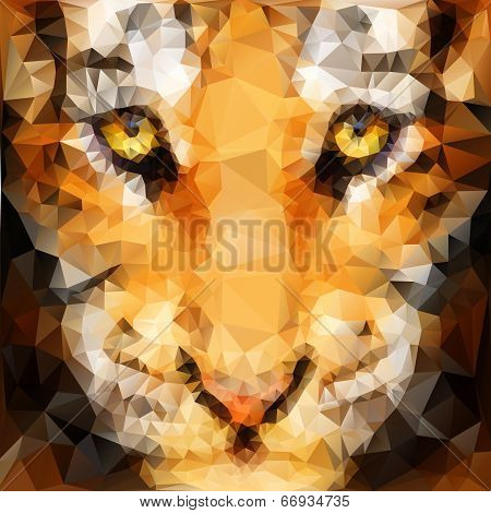 Artwork of tiger cub