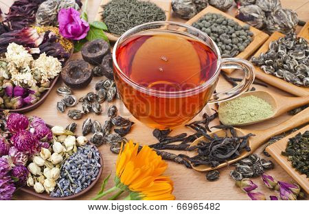 Tea glass cup and collection set of different dry types tea (green,black, herbal) on kitchen wooden table background