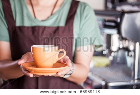 Barista Presents Freshly Brewed Coffee