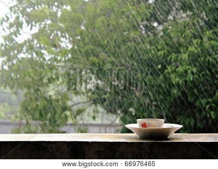 Rain On Nature. Abstract Background Rain