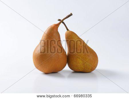 pair of sweet pears