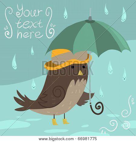 Mr Sparrow with Umbrella.