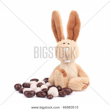Fluffy easter rabbit with bonbons.