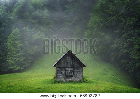 alone cabin in the woods