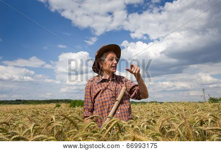 .old Man In Barley Field