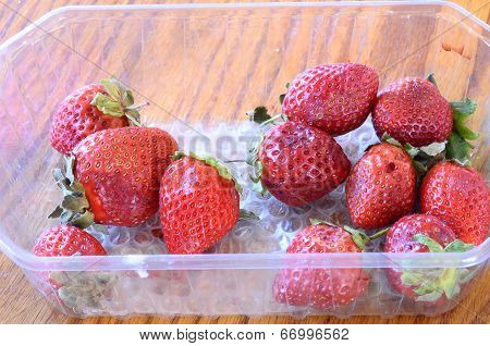 Strawberries Starting To Rot