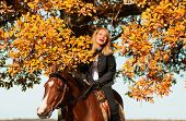 stock photo of horse face  - beautiful woman walking with horse and oak tree as background - JPG