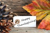 stock photo of thanksgiving  - Autumn Label with the Words Happy Thanksgiving and Colorful Leaves - JPG