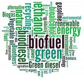 pic of biogas  - Biofuel in word collage - JPG