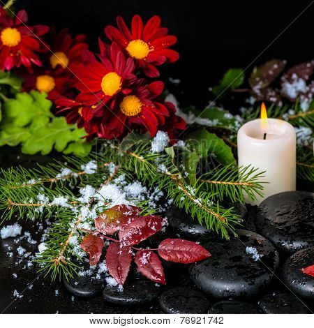 Winter Spa Still Life Of Evergreen Branches, Leaves With Drops, Snow, Candle And Chrysanthemum On Ze