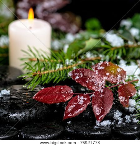 Winter Spa Still Life Of Evergreen Branches, Red Leaves With Drops, Snow,  Candle On Zen Basalt Ston