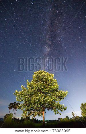 Milky Way ,long Exposure