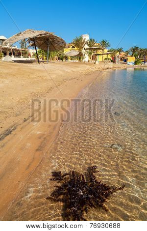 Beach At El Gouna. Egypt