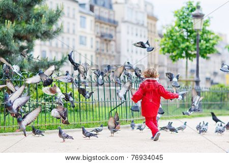 Cute Little  Boy Catching And Playing With Pigeons In City