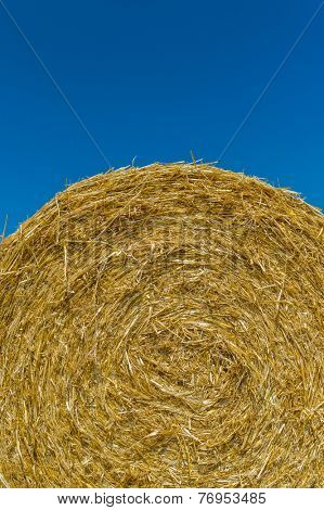 bales of grain after harvesting a wheat field