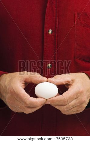 Balnk White Egg Held Gently By Man