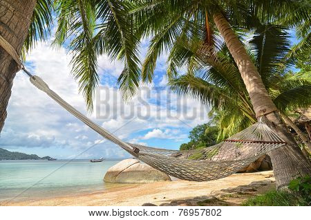 Hammock Hanging Between Palm Trees At The Sandy Beach And Sea Coast - Tropical Paradise