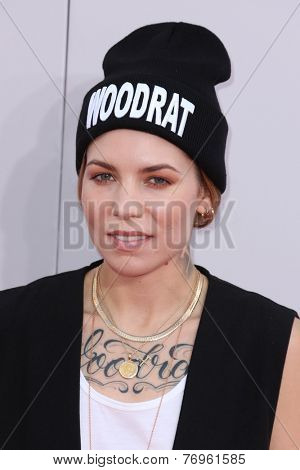 LOS ANGELES - NOV 23:  Skylar Grey at the 2014 American Music Awards - Arrivals at the Nokia Theater on November 23, 2014 in Los Angeles, CA