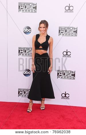 LOS ANGELES - NOV 23:  Renee Bargh at the 2014 American Music Awards - Arrivals at the Nokia Theater on November 23, 2014 in Los Angeles, CA