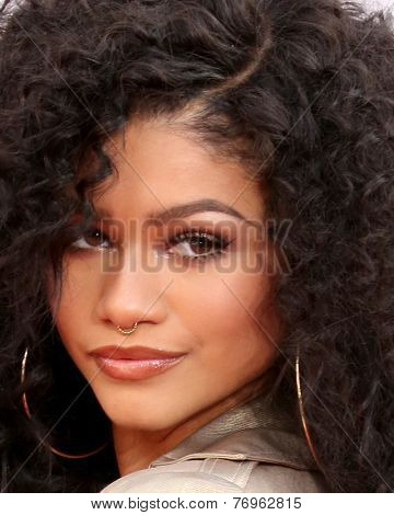 LOS ANGELES - NOV 23:  Zendaya Coleman at the 2014 American Music Awards - Arrivals at the Nokia Theater on November 23, 2014 in Los Angeles, CA