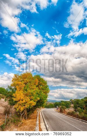 Country Road In An Autumn Afternoon