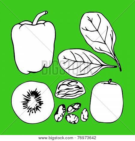 Green contour vegetables set