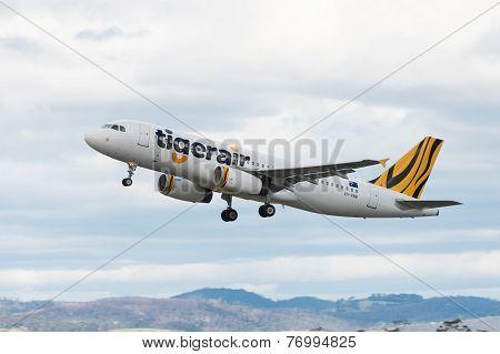 Tigerair Passenger Airliner Taking off