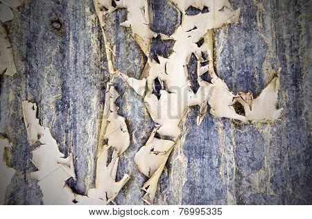 Peeling Paint On Corrugated Iron Sheets