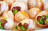 foto of french culture  - Abstract food background - JPG