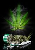 image of blubber  - Dried cannabis plant - JPG