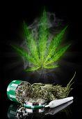 foto of blubber  - Dried cannabis plant - JPG