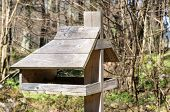picture of trough  - Feeding trough for birds a close up - JPG