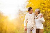 stock photo of relaxing  - Active seniors having fun and relax in nature - JPG