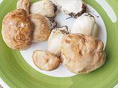foto of boletus edulis  - Boletus edulis aka penny bun or porcino mushroom or cep - JPG