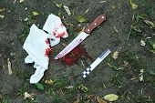 pic of bloody  - Bloody knife dragged along outdoors - JPG